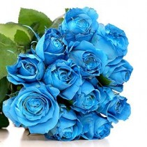1 Dozen Blue Roses arrangement in a vase **LIMITED TIME OFFER**