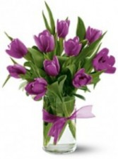 10 Tulips-colors may vary