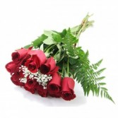 12 Red Roses Special!! wrapped roses no vase
