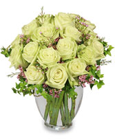 REMARKABLE ROSES Arrangement in Bath, NY | VAN SCOTER FLORISTS