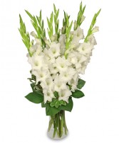 TRANQUIL LIGHT   White Gladiolus Vase in Manchester, NH | THE MANCHESTER FLOWER STUDIO