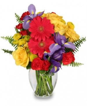 Flora Spectra Bouquet in Saskatoon, SK | QUINN & KIM'S GROWER DIRECT