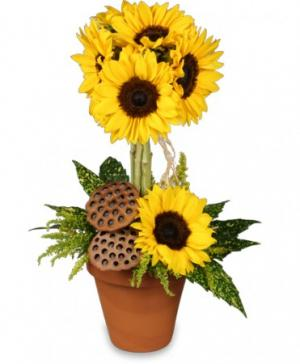 Pot O' Sunflowers Topiary Arrangement in Monument, CO | ENCHANTED FLORIST