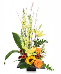 EXPRESSIVE BLOOMS Arrangement in Pembroke, MA | CANDY JAR AND DESIGNS IN BLOOM