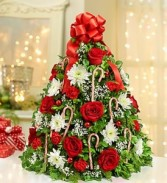 1800Flowers Holiday Tree Boxwood Tree