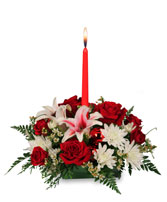 DECK THE HALLS Holiday Centerpiece in Goderich, ON | LUANN'S FLOWERS & GIFTS
