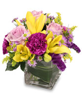 HIGH IMPACT Arrangement in Milton, MA | MILTON FLOWER SHOP, INC