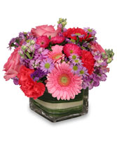 SWEETNESS OF LIFE Arrangement in Essex Junction, VT | CHANTILLY ROSE FLORIST