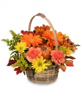 ENJOY FALL! Flower Basket in Opelika, AL | VIRGINIA'S FLOWERS & GOURMET GIFTS UNLIMITED