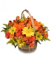 CHEERGIVER Basket in Olathe, KS | THE FLOWER PETALER