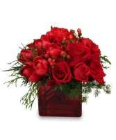CRIMSON CHRISTMAS Bouquet in Allen Park, MI | BLOSSOMS FLORIST