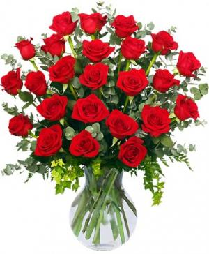 24 Radiant Roses Red Roses Arrangement in Fairfield, CT | Blossoms at Dailey's Flower Shop