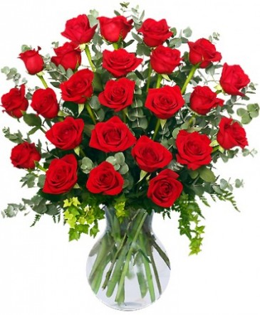 24 Radiant Roses Red Roses Arrangement