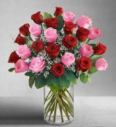 24 Ultimate Romance Roses