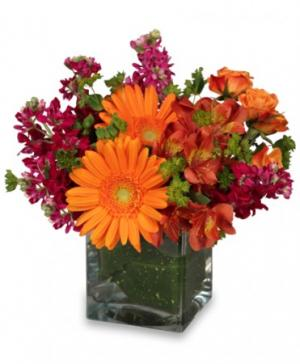 FLORAL EXUBERANCE Arrangement in Burbank, CA | LA BELLA FLOWER & GIFT SHOP