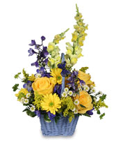 FRESH AIR Basket Arrangement in Michigan City, IN | WRIGHT'S FLOWERS AND GIFTS INC.