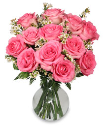CHANTILLY PINK ROSES Arrangement in Burlington, NC | STAINBACK FLORIST & GIFTS