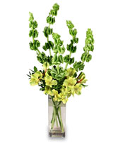 VERY VERDE Bouquet in Michigan City, IN | WRIGHT'S FLOWERS AND GIFTS INC.