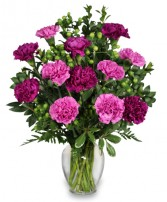 PUMP UP THE PURPLE Carnation Bouquet in Raymore, MO | COUNTRY VIEW FLORIST LLC