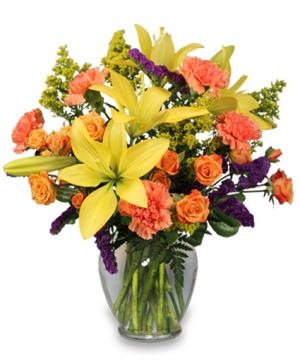 Bursting With Glee! Arrangement in Tigard, OR | A WILLIAMS FLORIST