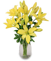 DEL SOL Lily Bouquet in Didsbury, AB | VICTORIA'S FLOWERS & GIFTS