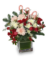 PEPPERMINT PLEASURES Christmas Bouquet in Victoria, BC | MAYFAIR FLOWER SHOP