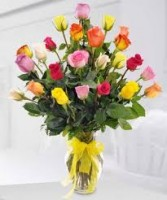 2dz.Rainbow of Color Roses in Vase Valentines Day Rose Special!!!