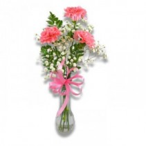 3 Carnation Bud Vase Call for color selection