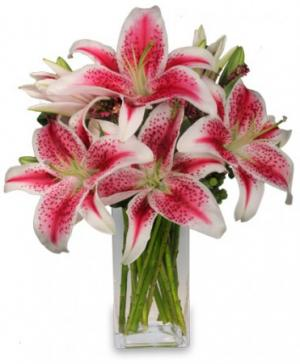 Luxurious Lilies Bouquet in Rensselaer, IN | JORDAN'S