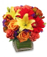 BRIGHT BEFORE YOUR EYES Flower Arrangement in Lake Mills, WI | Dutch Designs Ltd
