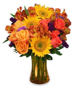 Sunflower Sampler Arrangement in Burnaby, BC | PETAL PUSHERS FLORIST INC.