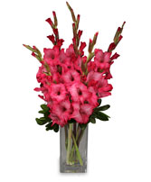 FILLED WITH GLADNESS Gladiolus Bouquet in Deer Park, TX | BLOOMING CREATIONS FLOWERS & GIFTS