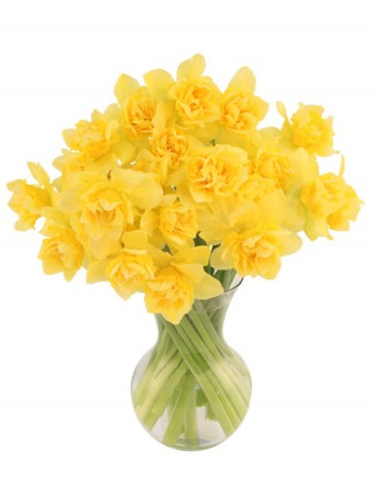 First Sign of Spring Daffodils Bouquet