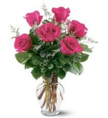 6 hot pink roses