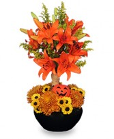 ORANGE YOU SPECIAL! Floral Topiary in Bath, NY | VAN SCOTER FLORISTS