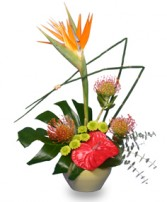 TROPICAL SHOW STOPPER Floral Arrangement in Harrisburg, PA | J.C. SNYDER FLORIST