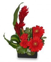 RADIANT IN RED Floral Arrangement in Walpole, MA | VILLAGE ARTS & FLOWERS