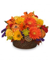 PUMPKIN GATHERING Autumn Arrangement in Rockville, MD | ROCKVILLE FLORIST & GIFT BASKETS