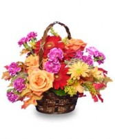 GARDEN CRESCENDO Floral Basket in Woburn, MA | THE CORPORATE DAISY
