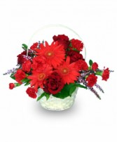 RED HOT ROMANCE Flower Basket in Prospect, CT | MARGOT'S FLOWERS & GIFTS