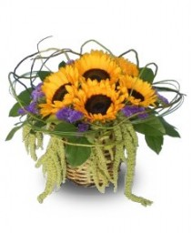 BASKET OF SUNSHINE Get Well Flowers