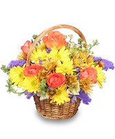 HARVEST HARMONY  Flower Basket in Parksville, BC | BLOSSOMS 'N SUCH