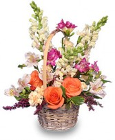 FRESH BREEZE Flower Basket in New York, NY | TOWN & COUNTRY FLORIST/ 1HOURFLOWERS.COM