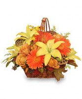 GOLDEN GRANDEUR Basket of Fall Flowers in Pembroke, MA | CANDY JAR AND DESIGNS IN BLOOM