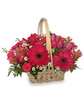 BEST WISHES BASKET of Fresh Flowers in Peru, NY | APPLE BLOSSOM FLORIST