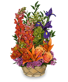Multi-Color Memories Flower Arrangement in Curwensville, PA | CURWENSVILLE FLORIST
