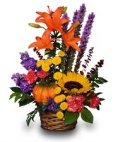 SUNNY PUMPKIN SURPRISE! in Greenville, OH | HELEN'S FLOWERS & GIFTS