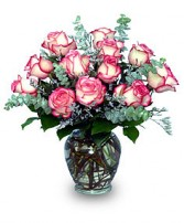 A DAZZLING DOZEN Pink Bi-Colored Roses in Edison, NJ | E&E FLOWERS AND GIFTS