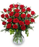 24 RADIANT ROSES Red Roses Arrangement in Kansas City, MO | SHACKELFORD BOTANICAL DESIGNS