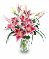 PURELY STARGAZERS Flower Vase in Prospect, CT | MARGOT'S FLOWERS & GIFTS